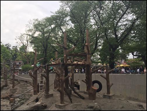 井之頭公園動物園