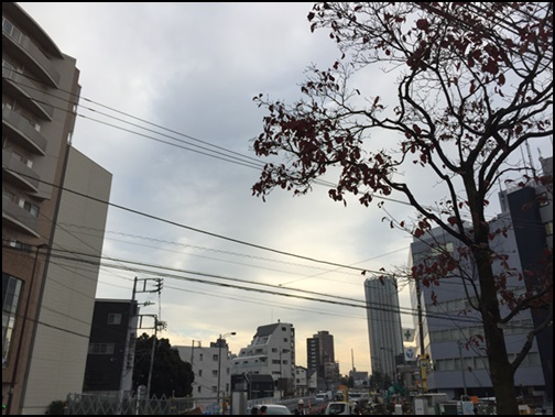 新宿若松河田