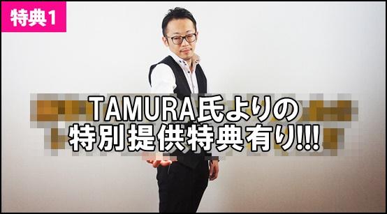 TAMURA特典FX