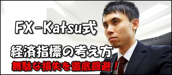 fx-katsu経済指標