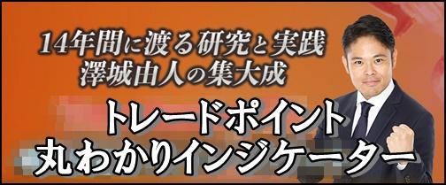 澤城由人特典インジケーター