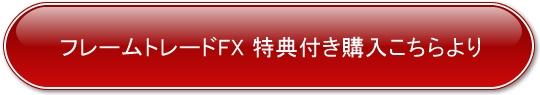フレームトレードFX購入ボタン