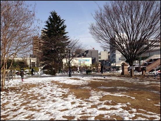 2014年2月の雪景色