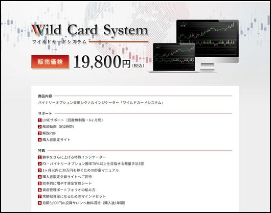 wildcardsystem 商品内容